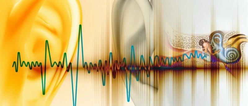L'orecchio come analizzatore critico sonoro